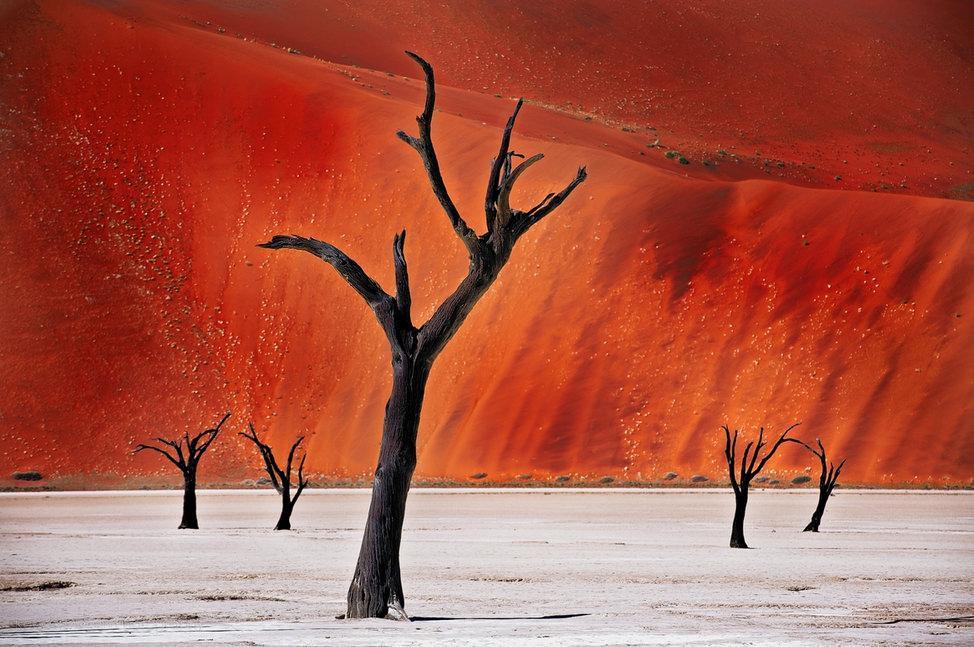 دره های Namib در نامیبیا