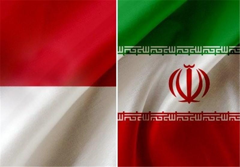 تاکید وزرای اقتصاد ایران و اندونزی بر اتصال نظام بانکی دو کشور