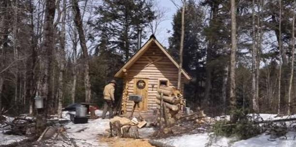 هنوز هم می توان زندگی دور از اجتماع داشت؟ ، کلبه ای در اعماق جنگلهای کانادا