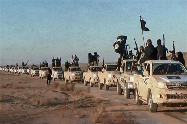 بعضی کشورها به دنبال انتقال داعشی ها به مناطق آزاد شده هستند
