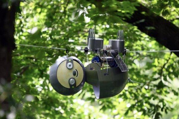 ربات تنبل از محیط زیست مراقبت می نماید