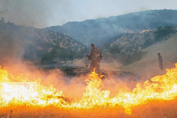 20 آتش سوزی در یک ماه ، 50 هکتار از مراتع همدان طعمه حریق شد