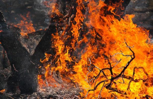 6 شهر لرستان در شرایط بحرانی آتش سوزی، احتیاج میلیاردی لرستان برای خرید امکانات